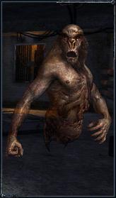 http://soc.stalker-game.ru/img/content/cr_poltergeist.jpg